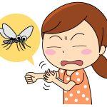 虫刺されの治し方を厳選してまとめました!